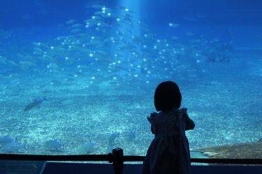 乳幼児(0歳3歳)子連れで沖縄旅行!【11月上旬】
